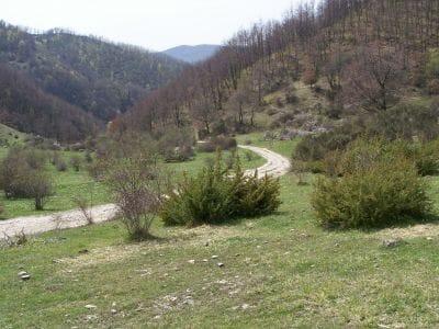 Monte Cimate17