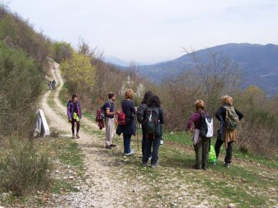 Monte Cimate6